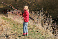Kind, Mädchen trägt Weidenruten, Weidenzweige im Bündel, die von einer Kopfweide abgeschnitten wurden