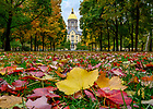 October 28, 2019; Colorful autumn leaves decorate the lawn of the Main Quad with the Golden Dome in the background. (Photo by Barbara Johnston/University of Notre Dame)