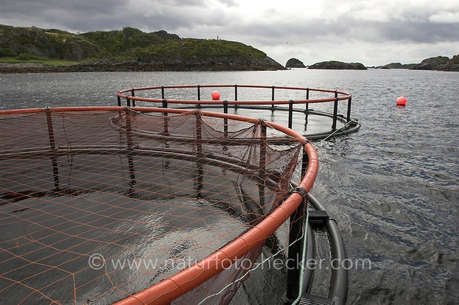 Lachszucht, Aquakultur, Aqua-Kultur, Lachsfarming in einem schwimmenden Netzgehege, Nord-Norwegen, Lofoten, Fischerei