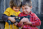Cousins Cash and Evan playing with the chicks, San Luis Obispo, California