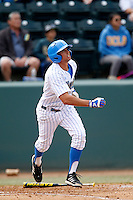Brian Carroll #24 of the UCLA Bruins bats against the Washington Huskies at Jackie Robinson Stadium on March 17, 2013 in Los Angeles, California. (Larry Goren/Four Seam Images)