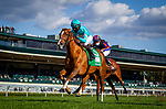 October 03, 2020:  Uni with Joel Rosario up wins the First Lady Stakes at Keenland Racecourse, in Lexington, Kentucky on October 03, 2020.  Evers/Eclipse Sportswire/CSM