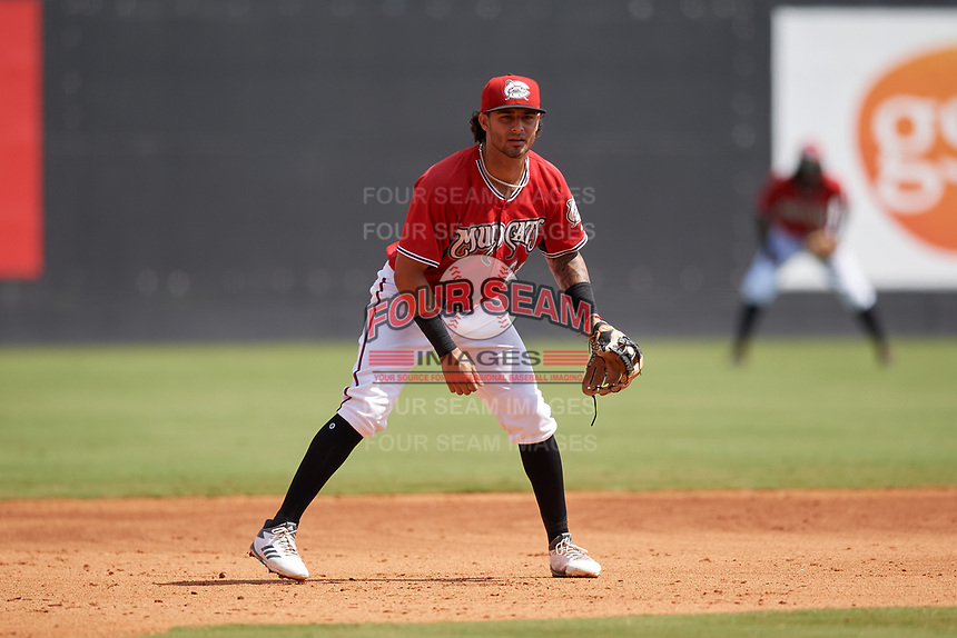 Carolina Mudcats third baseman Eddie Silva (28) during a Carolina League game against the Winston-Salem Dash on August 14, 2019 at Five County Stadium in Zebulon, North Carolina.  Winston-Salem defeated Carolina 4-2.  (Mike Janes/Four Seam Images)