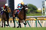 FUCHU,JAPAN-MAY 20: Almond Eye #13,ridden by Christophe Lemaire,wins the Yushun Himba (Japanese Oaks) at Tokyo Racecourse on May 20,2018 in Fuchu,Tokyo,Japan (Photo by Kaz Ishida/Eclipse Sportswire/Getty Images)
