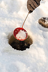 Clearing the ice fishing hole with a homemade ice scooper.