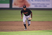 Great Falls Voyagers third baseman Bryce Bush (8) during a Pioneer League game against the Idaho Falls Chukars at Melaleuca Field on August 18, 2018 in Idaho Falls, Idaho. The Idaho Falls Chukars defeated the Great Falls Voyagers by a score of 6-5. (Zachary Lucy/Four Seam Images)
