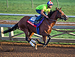 October 27, 2014:  Palace, trained by Linda Rice, exercises in preparation for the Breeders' Cup Xpressbet Sprint at Santa Anita Race Course in Arcadia, California on October 27, 2014. Scott Serio/ESW/CSM