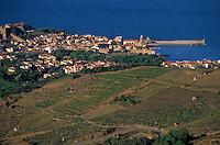 urope/France/Languedoc-Roussillon/66/Pyrénées -Orientales/Collioure:   le vignoble de Banyuls et le port de Collioure en fond
