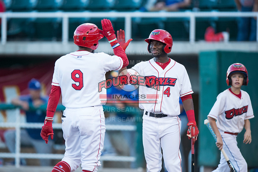 Orem Owlz center fielder D'Shawn Knowles (4) congratulates Kevin Maitan (9) after hitting a home run during a Pioneer League game against the Ogden Raptors at Home of the OWLZ on August 24, 2018 in Orem, Utah. The Ogden Raptors defeated the Orem Owlz by a score of 13-5. (Zachary Lucy/Four Seam Images)