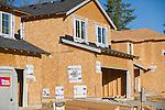 Building Three Homes