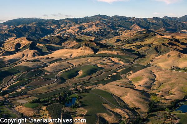 aerial photograph of  Santa Ynez Valley vineyards, Santa Barbara County, California