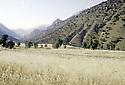 Irak 1991  Dans la région de Choman  Iraq 1991   Near Choman valley
