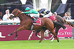 10-04 Prix Jean-Luc Lagardère. Grade 1. .Winner : Siyouni. Jockey : G. Mossé. Owner : H.H Aga Khan. Trainer : A. de Royer Dupré. 2nd Place for Pounced with Jim Fortune. 3rd Place for Buzzword with A. Ajtebi.