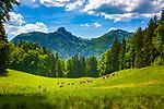 Deutschland, Bayern, Chiemgau, bei Schleching: Wandern auf der Petereralm, im Hintergrund die Chiemgauer Alpen mit Rudersburg (links) | Germany, Bavaria, Chiemgau, near Schleching: hiking at Peterer Alm, at background Chiemgau Alps with Rudersburg mountain (left)