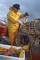 Europe/France/Bretagne/29/Finistère/Audierne: Jos FOUQUET rentrant de la pêche au homard [Non destiné à un usage publicitaire - Not intended for an advertising use]