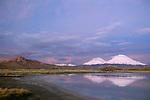 Payachata Volcanoes, Lauca National Park, Althiplano, Chile