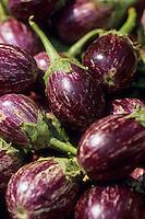 Asie/Inde/Maharashtra/Bombay: Colaba Market - Aubergines