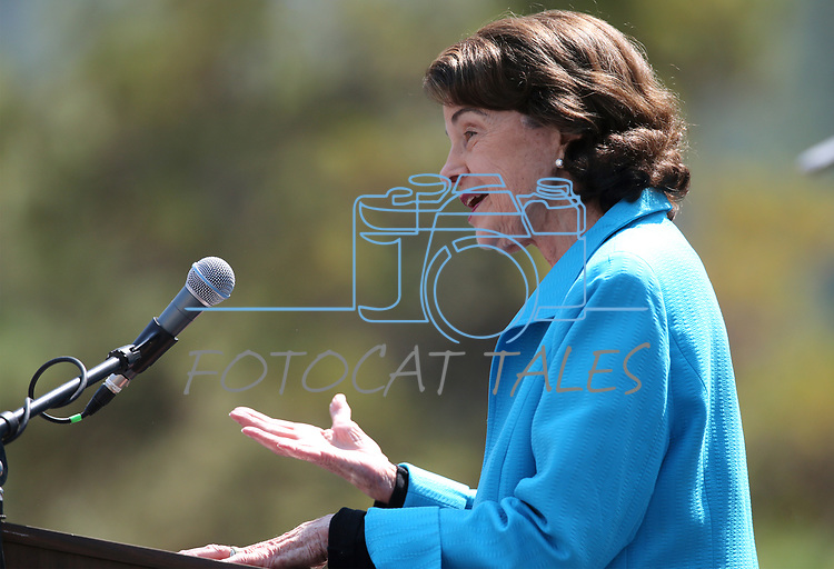 U.S. Sen. Dianne Feinstein, D-Calif., speaks at the 22nd annual Lake Tahoe Summit, at Sand Harbor State Park, near Incline Village, Nev., on Tuesday, Aug. 7, 2018. <br /> Photo by Cathleen Allison/Nevada Momentum