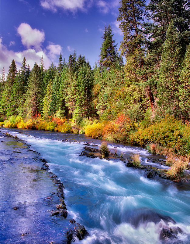 Metolius River with fall color. Oregon.