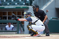 Charlotte Knights catcher Zack Collins (8) sets a target as home plate umpire Erich Bacchus looks on during the game against the Durham Bulls at BB&T BallPark on May 27, 2019 in Charlotte, North Carolina. The Bulls defeated the Knights 10-0. (Brian Westerholt/Four Seam Images)
