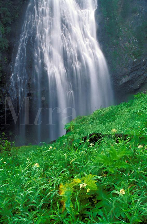 PR88, waterfall, river, water, blue, falls, water fall, water falls, waterfalls, creek, creeks, stream, streams, WA, Pierce County, Cascade Mountains, Mt Rainier, boulders, Spray Creek, Mira.com