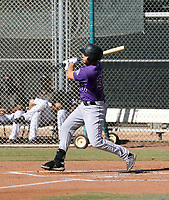 Grant Lavigne - 2020 AIL Rockies (Bill Mitchell)