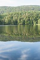 The thickly forested shoreline reflects in the still morning waters of Shirakomaike, Yatsugatake Range, Nagano, Japan.