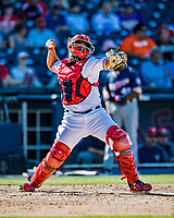 2 March 2019: Washington Nationals top prospect catcher Raudy Read in action during a Spring Training game against the Minnesota Twins at the Ballpark of the Palm Beaches in West Palm Beach, Florida. The Nationals defeated the Twins 10-6 in Grapefruit League play. Mandatory Credit: Ed Wolfstein Photo *** RAW (NEF) Image File Available ***