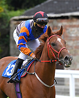 Diamond Cottage ridden by John Egan goes down to the start  of The Venture Security Handicap Stakes  during Horse Racing at Salisbury Racecourse on 11th September 2020