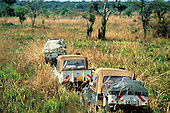 Chipundu, Zambia. Convoy of tourist jeeps with trailers crossing open savannah countryside.