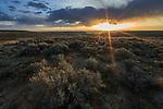 Sagebrush-steppe. Alkali Draw. Sublette County, Wyoming.