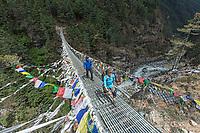 Crossing Hillary Bridge, Khumbu, Nepal