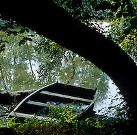 An abandoned punt half-full of water is beached at the foot of a tree on the banks of the Thames