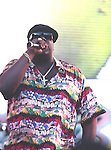 Notorious BIG. 1995..