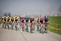 echeleon formation through De Moeren<br /> <br /> 81st Gent-Wevelgem 'in Flanders Fields' 2019<br /> One day race (1.UWT) from Deinze to Wevelgem (BEL/251km)<br /> <br /> ©kramon