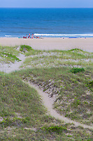 Avon, Outer Banks, North Carolina.  Pathway Leads to Family Gathering on the Beach.  Vegetation Stabilizes Dunes.