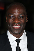 HOLLYWOOD, CA, USA - FEBRUARY 15: Adewale Akinnuoye-Agbaje at The Annual Make-Up Artists And Hair Stylists Guild Awards held at the Paramount Theatre on February 15, 2014 in Hollywood, Los Angeles, California, United States. (Photo by Xavier Collin/Celebrity Monitor)