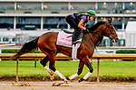 April 29, 2021: Millefeuille exercises in preparation for the Kentucky Oaks at Churchill Downs on April 29, 2021 in Louisville, Kentucky. Scott Serio/Eclipse Sportswire/CSM
