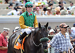 July 20, 2011.Price ridden by Joseph Talamo on the way to the winner's circle after winning the first race on opening day at Del Mar Thoroughbred Club, Del Mar CA.