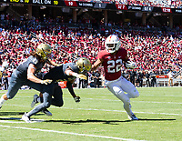 Stanford, California - September 15, 2018: The Stanford Cardinal Football Team defeats UC Davis 30-10 at Stanford Stadium in Stanford, California.