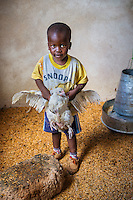 AWright_Tanz_007835.tif<br /> Tanzania, Africa. Young boy in his grandmother's chicken coop. She obtained these chickens through a small loan from BRAC.