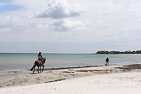Reiter am Strand von Balka auf der Insel Bornholm, Dänemark, Europa<br /> rider, beach at Balka, Isle of Bornholm Denmark