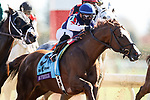 November 7, 2020 : Knicks Go, ridden by Joel Rosario, wins the Big Ass Fans Dirt Mile on Breeders' Cup Championship Saturday at Keeneland Race Course in Lexington, Kentucky on November 7, 2020. Wendy Wooley/Breeders' Cup/Eclipse Sportswire/CSM