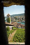 Image Ref: SWISS057<br /> Location: Schaffhausen, Switzerland<br /> Date of Shot: 20th June 2017