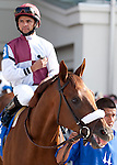 March 2010:  Fly Down and Jose Lezcano before the Louisiana Derby at the Fair Grounds in New Orleans, La.