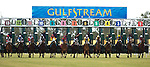 10 January 2010:  Horses out of the gate during the Marshua's River Stakes at Gulfstream Park in Hallandale Beach, FL.