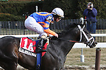 2011 03 05: Heavy favorite Calibrachoa, part of an entry, with Ramon Dominguez up, win the Grade 3 Tom Fool Stakes, for 3-year olds & up, at 6 furlongs, on the inner dirt track, Aqueduct Racetrack, Jamaica, NY. Trainer Todd Pletcher. Owner Repole Stables