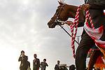 FUCHU,JAPAN-FEBRUARY 18: Albert,ridden by Ryan Moore,after winning the Diamond Stakes at Tokyo Racecourse on February 18,2017 in Fuchu,Tokyo,Japan (Photo by Kaz Ishida/Eclipse Sportswire/Getty Images)
