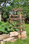 Pleasant Valley garden cucumber trellis
