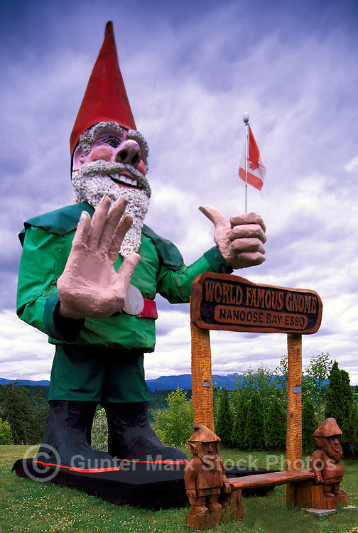 The Famous World's Largest Giant Gnome at Nanoose Bay, BC, Vancouver Island, British Columbia, Canada - recognized by the Guinness Book of World Records